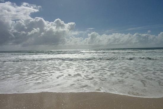 Surfers Paradise-billede