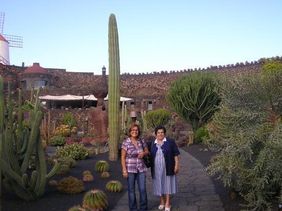 Jardin de cactus lanzarote photo de lanzarote les for Jardin de cactus lanzarote