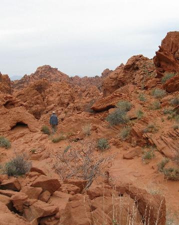 Valley of Fire State Park: Rainbow Vista trail