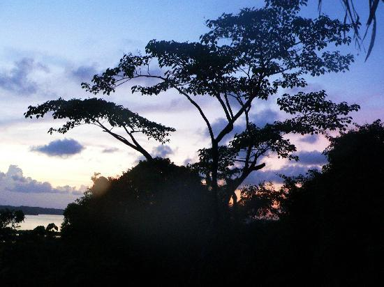 La Loma Jungle Lodge and Chocolate Farm: Sunset from our bungalow