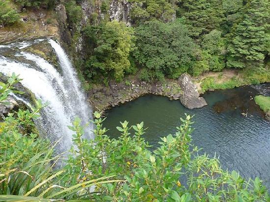 วานกาไร, นิวซีแลนด์: Whangarei Falls NZ