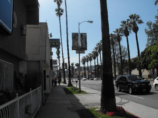 Rodeway Inn Hollywood: from room