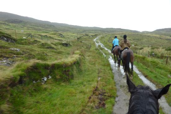 Westport Woods Hotel : Trail ride