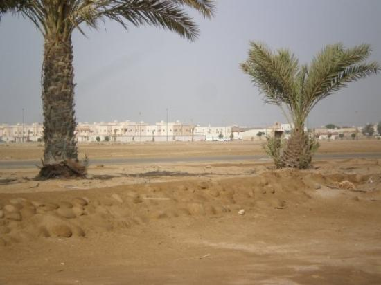 Yanbu Photo