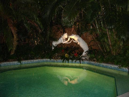 The Mermaid & The Alligator: Pool at night