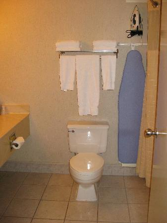 Holiday Inn Express Roseburg: The odd location for the iron/ironing board, which was beside the shower?