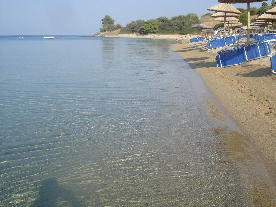 Sithonia, Greece: Lagomandra Beach