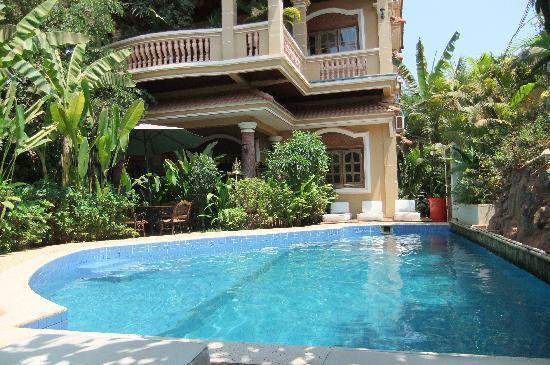 Le Tigre Hotel : The pool
