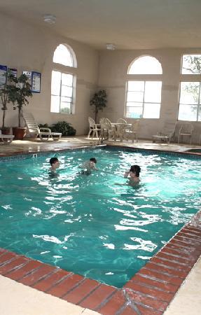 BEST WESTERN PLUS Lubbock Windsor Inn & Suites: Best Western Lubbock Windsor Inn Swimming Pool