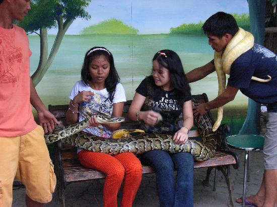 Manila Zoo : 勇気が有る方は記念写真をどうぞ!