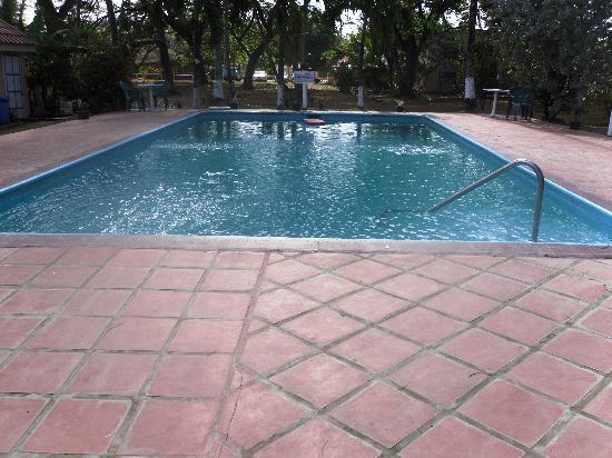 Coconut Inn: Pool