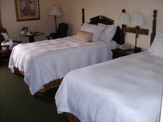 Hampton Inn Scranton at Montage Mountain: view of the room.