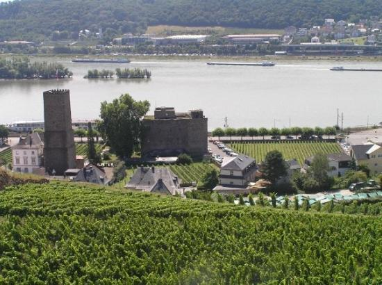 Rüdesheim nad Renem, Niemcy: Rüdesheim this side of the river and Bingen on the other side