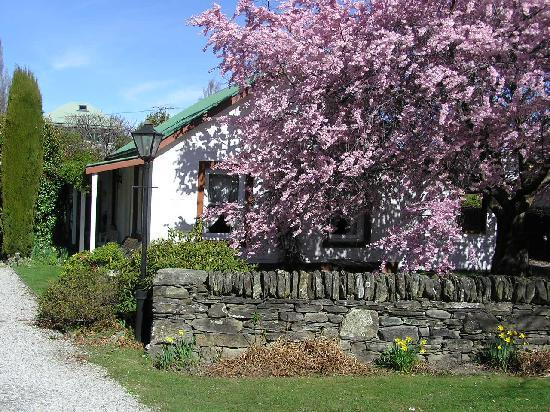 Spring trees in bloom at Settlers Cottage Motel