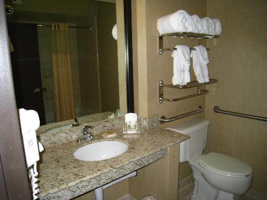 Holiday Inn Casa Grande: bathroom