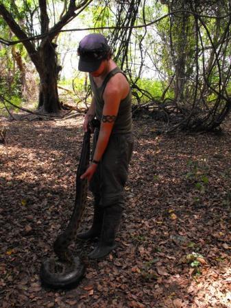 Rurrenabaque, Bolivia: 4 meter, 50 kilo Anaconda.