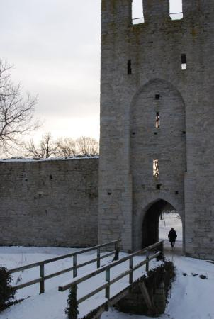 Visby Picture