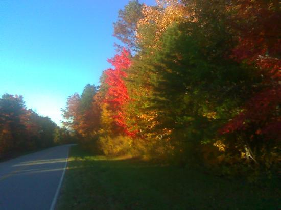 Tellico Plains, TN: Restaurant located on this scenic byway Cherohala Skyway (fall scene)
