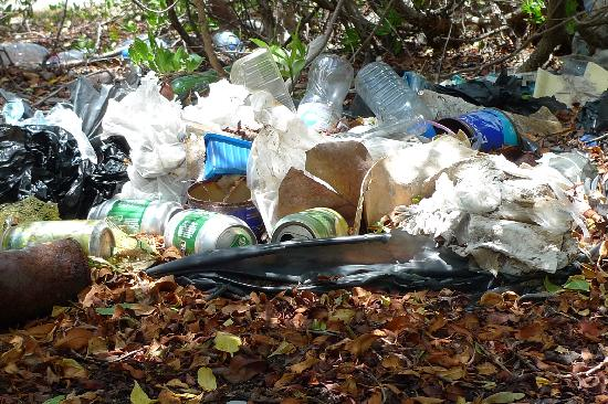 Peter Island Resort and Spa: Garbage at Great Harbour