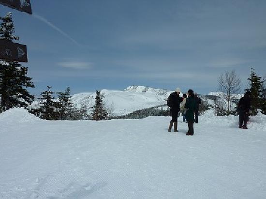 Kusatsu International Ski Place: スキースクール