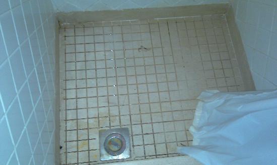 Laguna Vista Beach Resort: Il piatto della doccia da cui uscivano scarafaggi