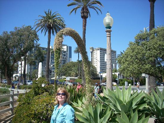 Oceana Beach Club Hotel: Walking to Shops and Entertainment