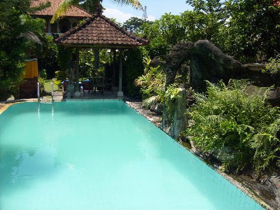 The Ducks Nutz : Swimming Pool & Gazebo