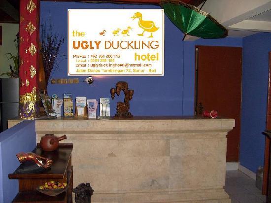 The Ducks Nutz: Reception Area