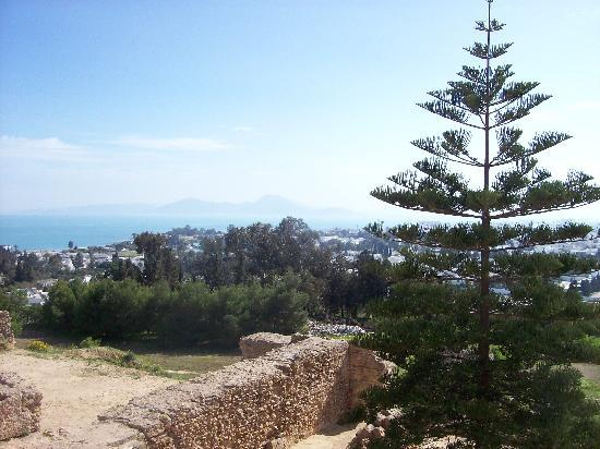 Carthage, Tunesië: the famous view
