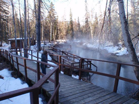 the origin of the springs picture of liard river hot springs rh tripadvisor in