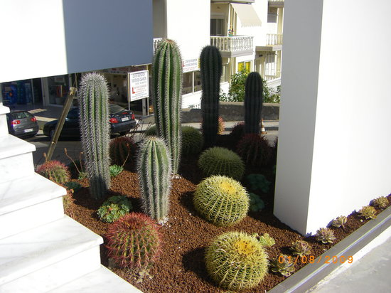 Smartline Semiramis City Hotel: the side of the entrance