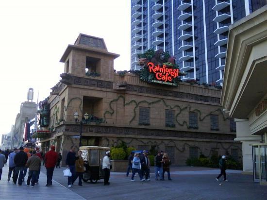 Rainforest Cafe Atlantic City Reviews