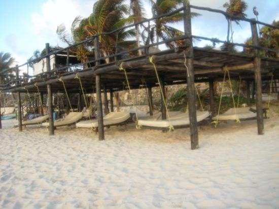 Papaya Playa : There were comfy hanging beds under the deck.  This allowed me to leave sunburn free.