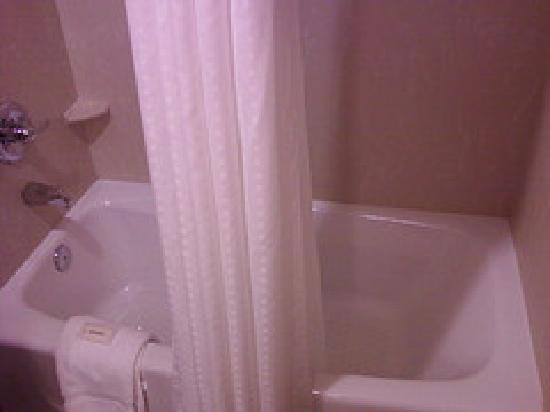 Holiday Inn Express & Suites Spartanburg North: bathtub