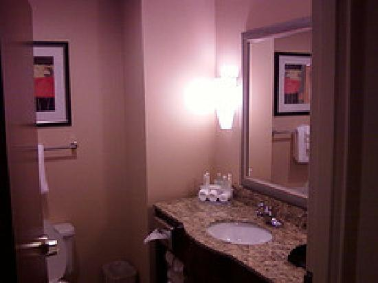 Holiday Inn Express & Suites Spartanburg North: bathroom sink