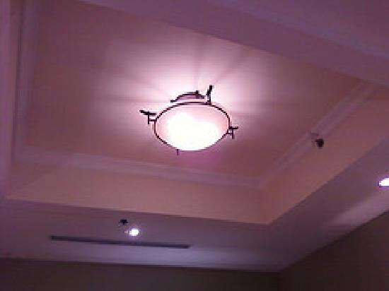 Holiday Inn Express & Suites Spartanburg North: tray ceiling in lounge