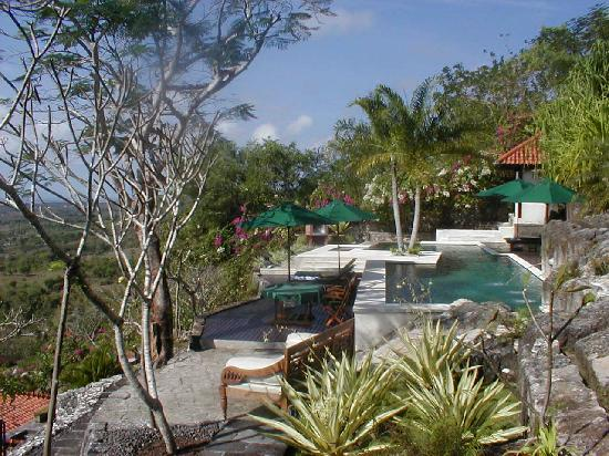 Canang Sari Villas : Private Pool