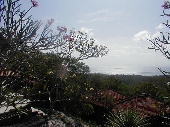 Canang Sari Villas : view from villa frangipani