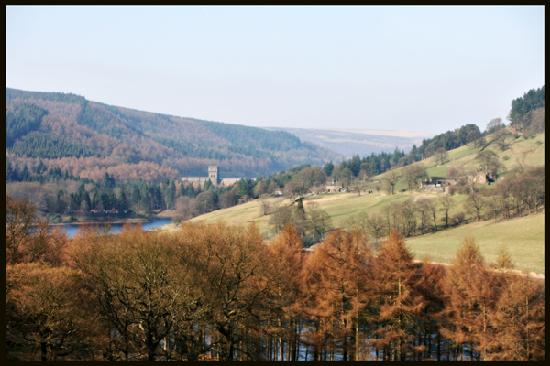 Riding House Farm: LadyBower Walk