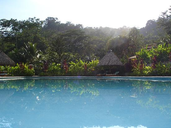 Villas Corcovado: Pool