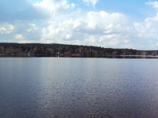 Geyrischer Teich ...bei Geyer (ist klar^^)