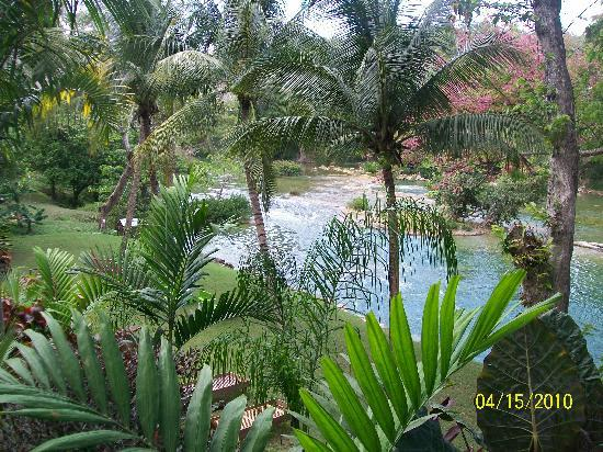 Mahogany Hall Boutique Resort : The Mopan River