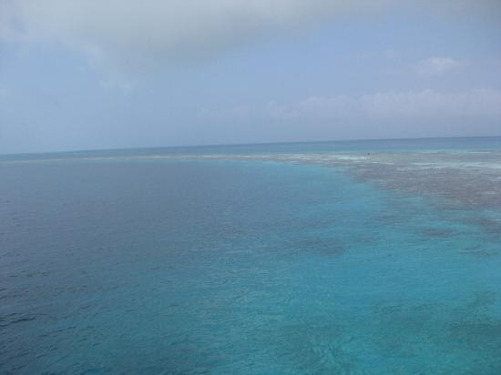 Le Grand Trou Bleu, atoll de Lighthouse Reef : Rim of The Blue Hole
