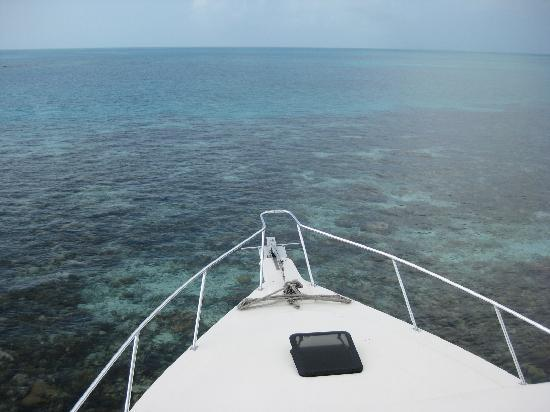 Le Grand Trou Bleu, atoll de Lighthouse Reef : Arriving @ The Blue Hole