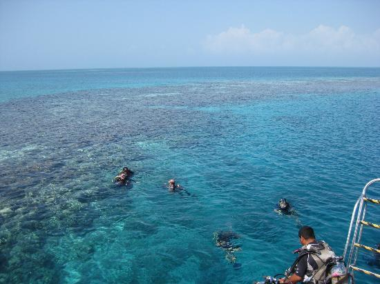 The Great Blue Hole at Lighthouse Reef: Divers getting ready