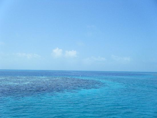 Grande Buraco Azul, Lighthouse Reef: the edge of the Blue Hole