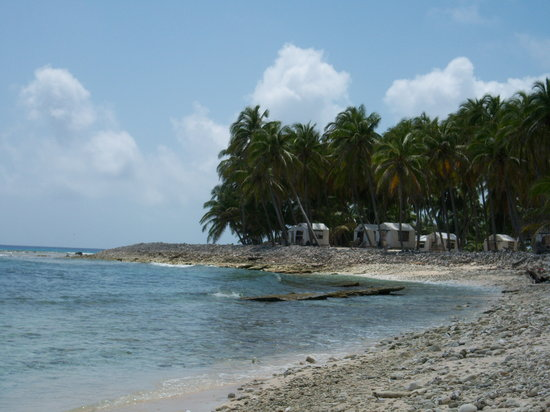 Glovers Reef Atoll, Belize: Half Moon Caye