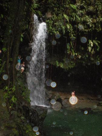 Roseau, Dominica: A Dip in the Emerald Pool
