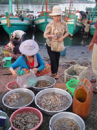Kampot, Cambodia: Selling Fish