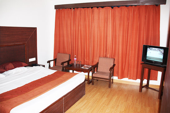 Hotel Greenfields : Deluxe Room